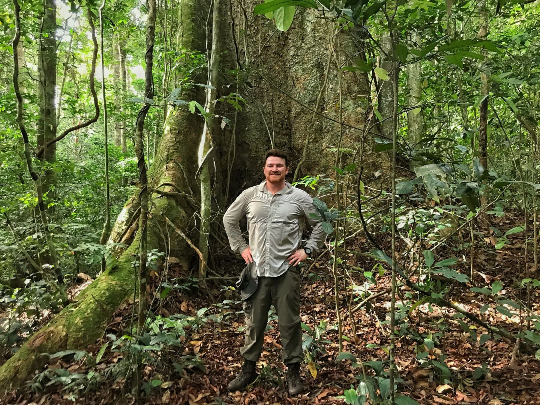 Ivindo National Park, Gabon