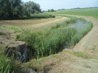 Wat over is van de Oude Rijn