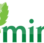 Budgeting Solutions: Why You Should Choose Mint.com