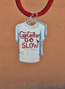 Go Slow I
