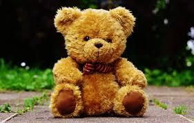 It's always the teddy bear