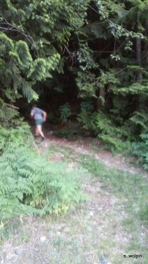 Tim takes off - looping back to his car via mysterious paths