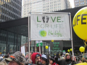 Pro-Life Wisconsin Banner with Love for Life at Chicago March for Life