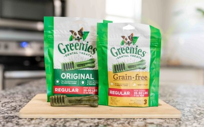 Greenies Are Actually BAD For Your Dog