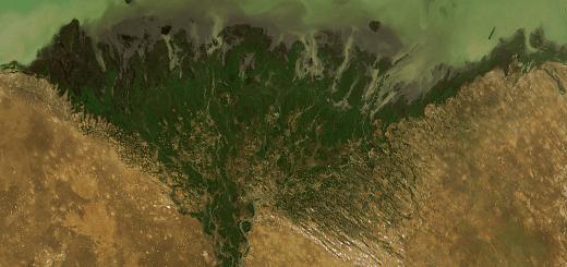 riverdelta