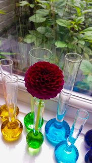 Bubble Stem Bud Vase