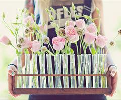 Test tubes Bud Bubble stem vase