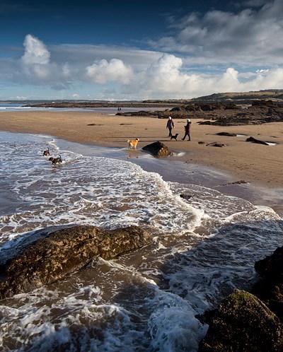 Gullane Bents, beach walk, East Lothian