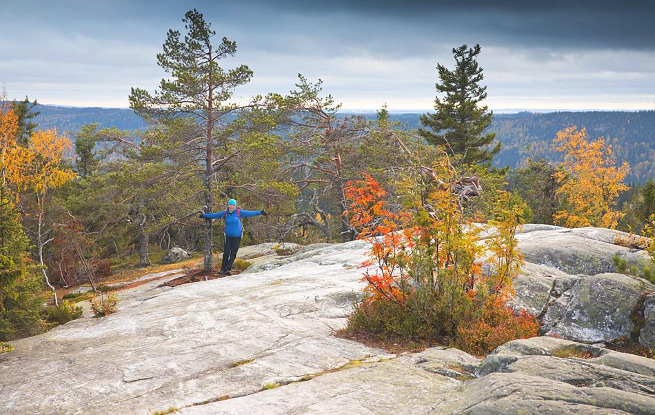 Koli National Park Finland