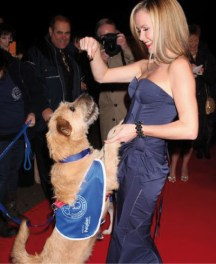 stunt-dogs-film-and-TV-9