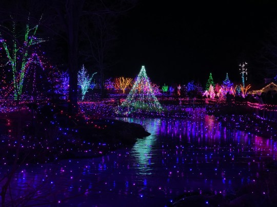 A photo of Garden's Aglow, a Christmas light show in Boothbay, Maine. The lights are all sharp and bright, contrasted with the night sky.