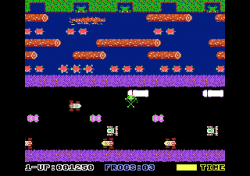 Pic from the video game Frogger.