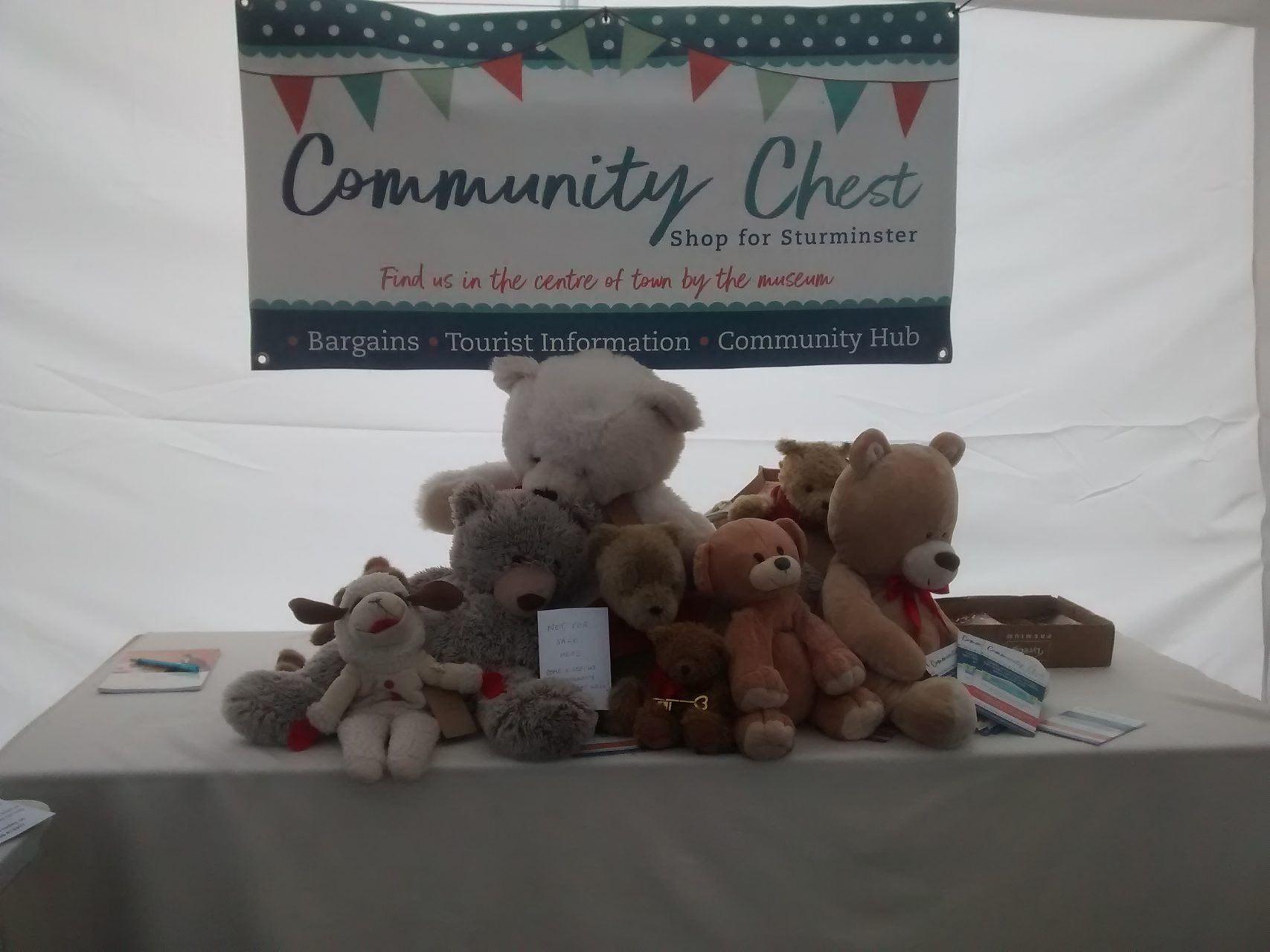 Sturminster Newton-Volunteer Fridat at the Community Chest 3