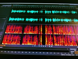 Waveform and spectrogram in Adobe Audition