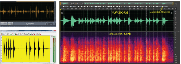collage of screenshots of waveform and spectrogram displays depicting recorded gunshots