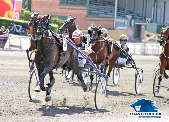 Shadow Tinghøj vinder sikkert for Bent Svendsen,