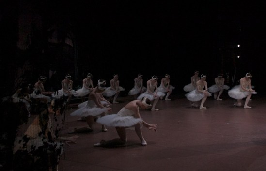 Swan Lake: the Swans saying thank you to the audience...