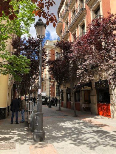 Sehenswürdigkeiten Madrid Calle de las Huertas Allee