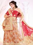 Rijas Bridal Wear Collection 2012 Outfits for Ladies