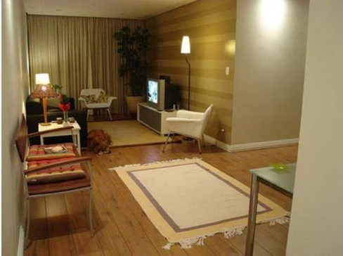 Cheap Decorating Ideas For Apartments 2013 007