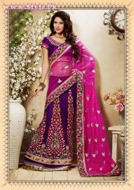 Latest Designs of Sarees 2014 for Women001