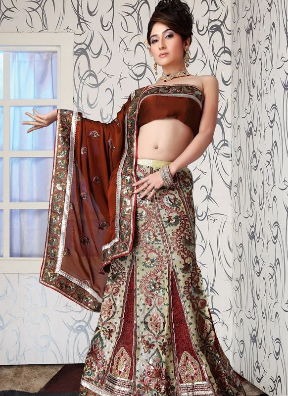 Lehenga Choli Dresses 2014 For Women 002