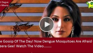 fight dengue with meera