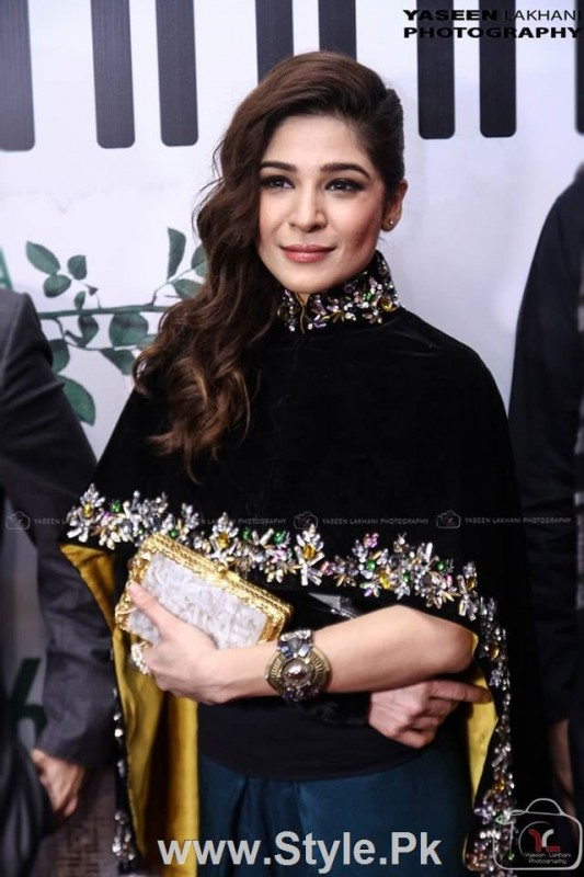 Celebrities at the Karachi Premiere of Ho Mann Jahan (9)