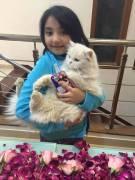 Javeria Saud daughter Jannat birthday 13