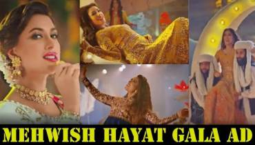 PEMRA's Ban on Mehwish Hayat Ad