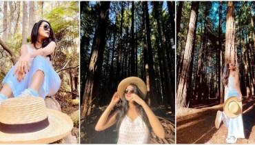 Saniya Shamshad shares beautiful pics from Redwood Forest