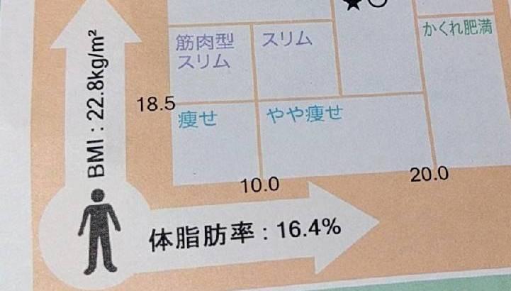 体脂肪率16%