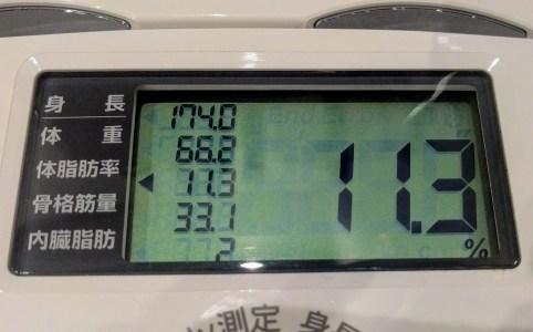 体脂肪11.3%