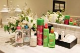 garnier-skinactive-retreat-langdon-hall-14