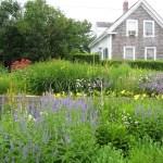 Gardens: Provincetown