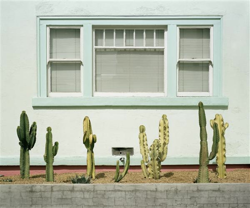 Mark-Yaggie-Cacti-Study