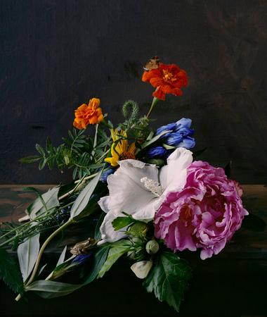 Sharon-Core-1695-2012