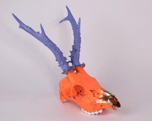 purple-orange-deer