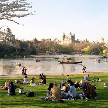 Sally Gall Central Park