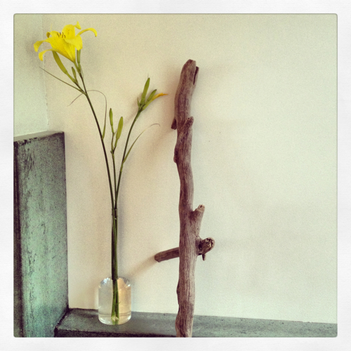 Still Life With Lily And Stick Photo