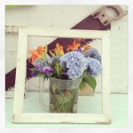 Sunday Bouquet: Cape Cod Flowers, Framed