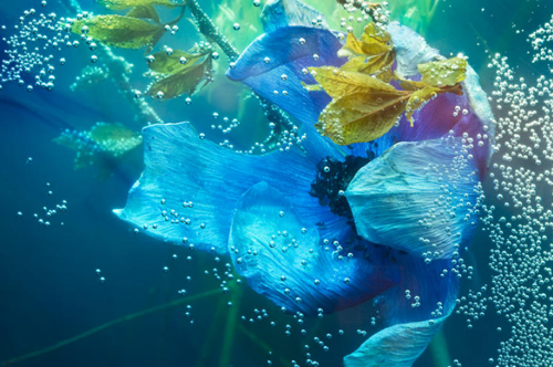 art-flow-heaeyon-yoon-anemone