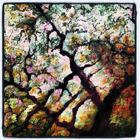 trees-detail
