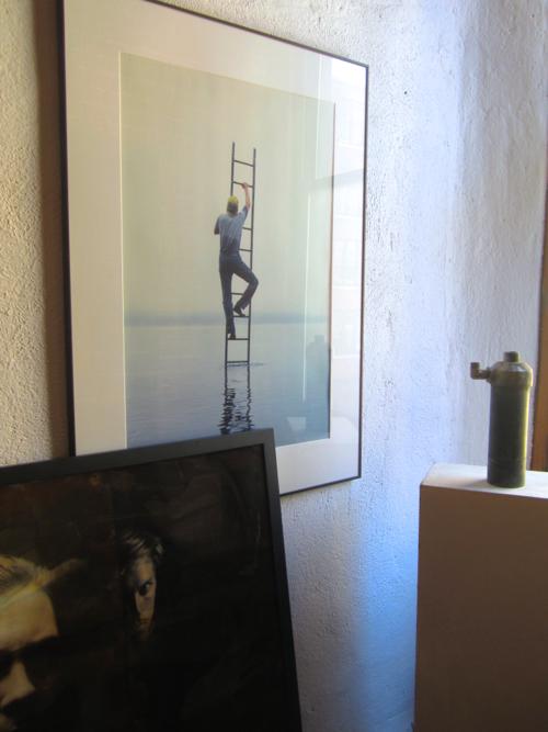 stephen-sheffield-ladder-water