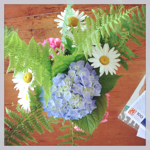 Hydrangea Daisy Fern Arrangement On Cape Cod