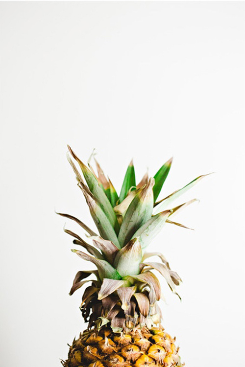 minted-pineapple-print