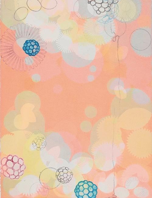 sarah-lutz-2013-hanging-garden-series-x