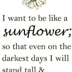 Saturday Say It: Like A Sunflower