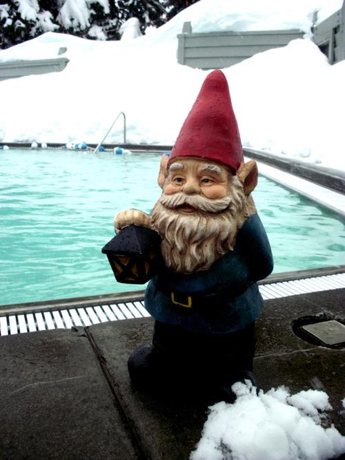 snow-pool-gnome-society-6