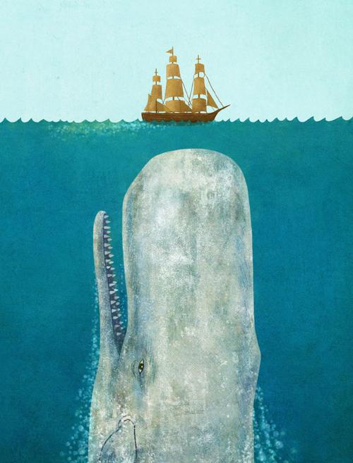 whale-terry-fan